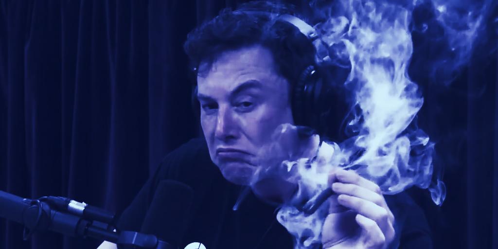 Elon Musk: Bitcoin Is 'Less Dumb' Than Cash
