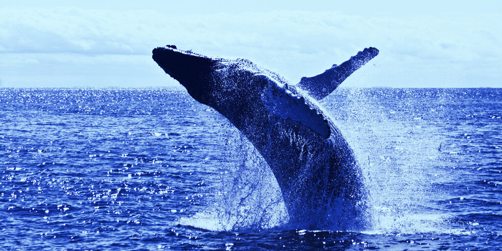 Are whales controlling the price of Bitcoin? New report weighs in - Decrypt