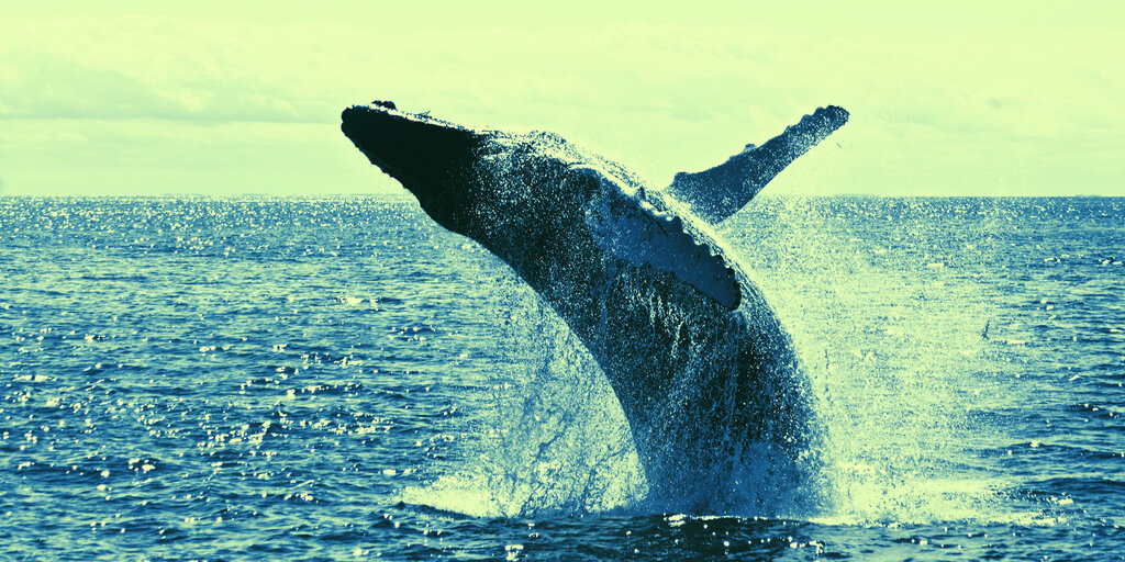 Who Are Bitcoin Whales and How Do They Trade?