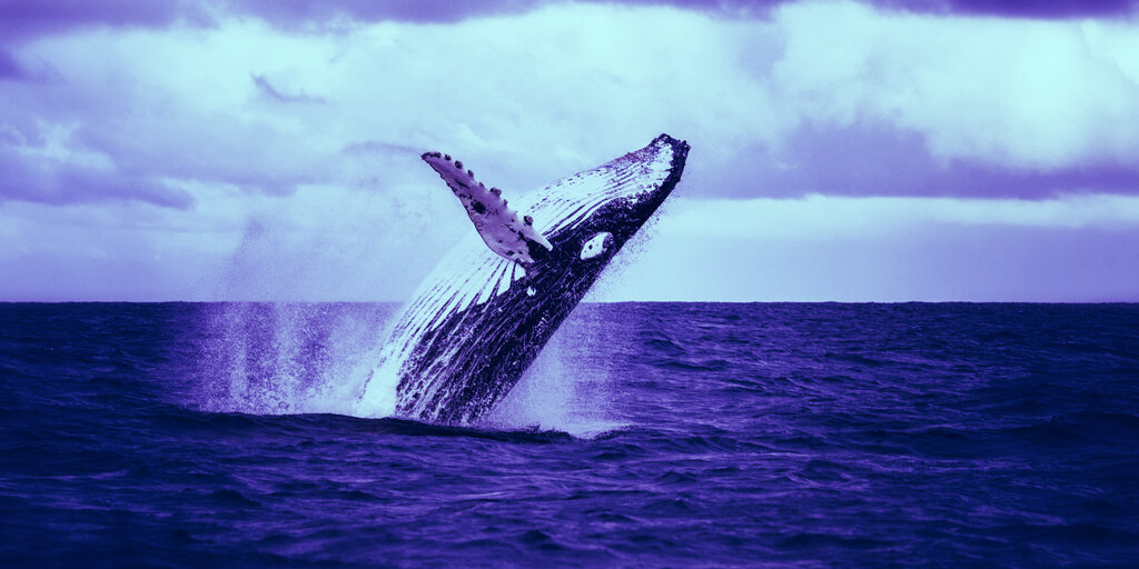 Billion-Dollar Bitcoin Whale Surfaces as Price Breaks All-Time High