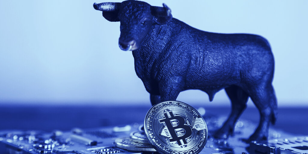 Bitcoin Whale Growth Is Slowing, Flagging Possible 'Bull Run': Report
