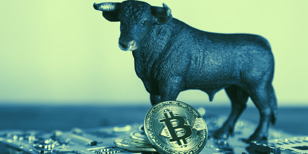 Here's Who Profited the Most Off Bitcoin's Bull Run