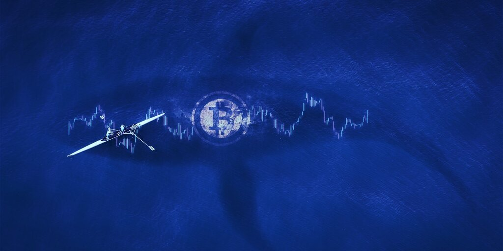 Bitcoin Whales Swoop in As Markets Hit Turbulence