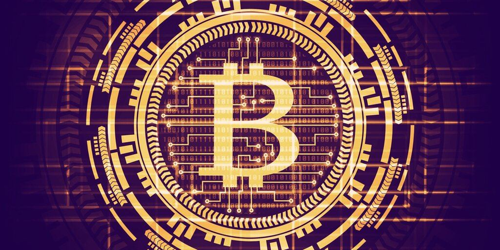 The Neuroscientist Who Became a Bitcoin Data Guru
