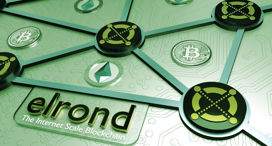 Elrond CEO Wants to Onboard 1 Billion People Into Cryptocurrency