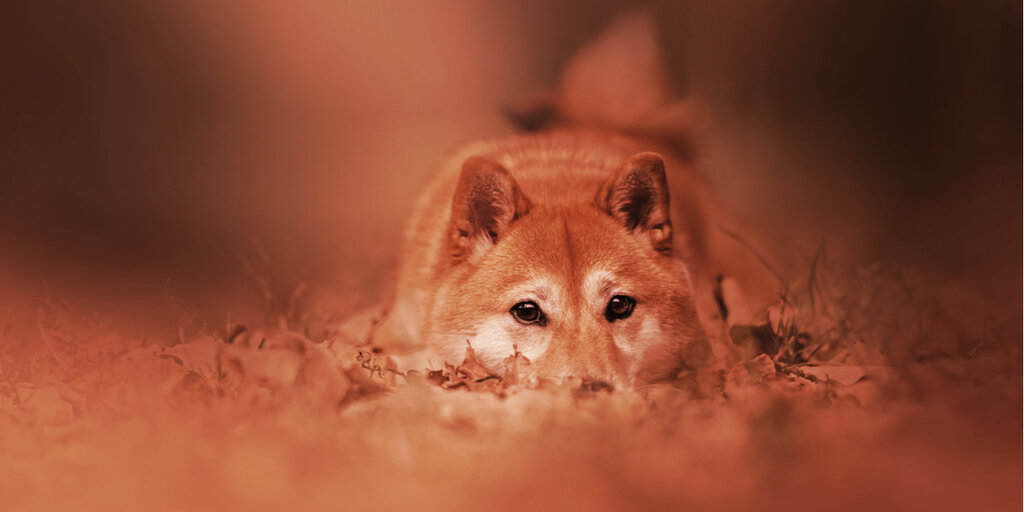 Dogecoin Knockoff Shiba Inu Sheds 12% After Coinbase Delays Listing
