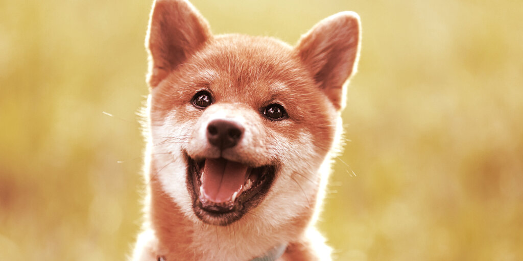 What Is Baby Doge and Why Is Elon Musk Pumping the Dogecoin Knockoff?