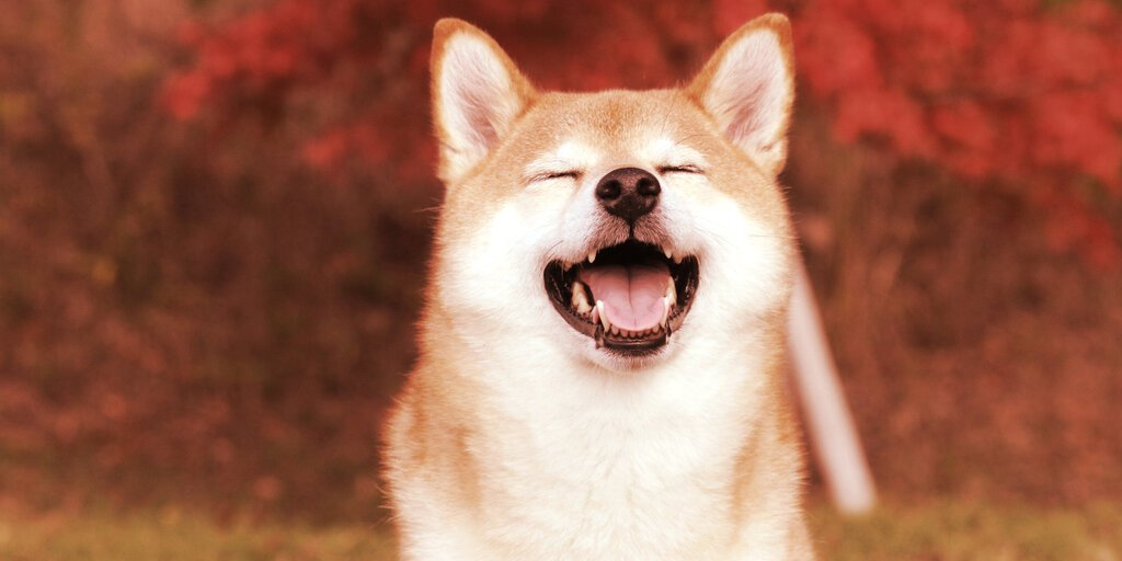 Dogecoin Knockoff SHIB Hits Coinbase, Price Spikes 11% in an Hour