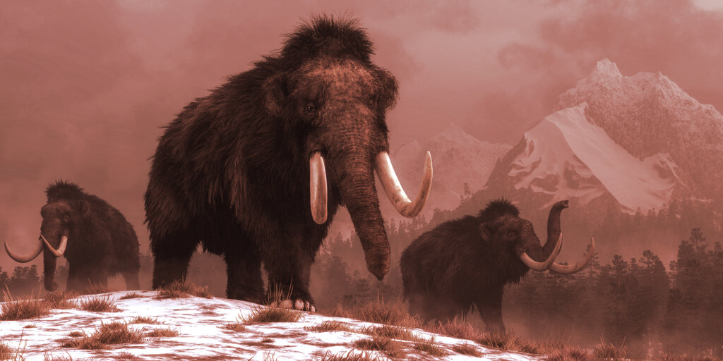 Bitcoin Billionaires Back Woolly Mammoth Revival Project Colossal