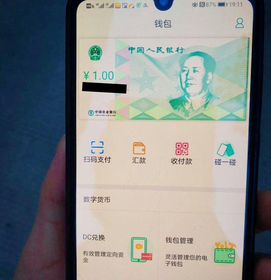 DCEP screenshot
