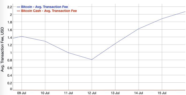 Average transaction fee