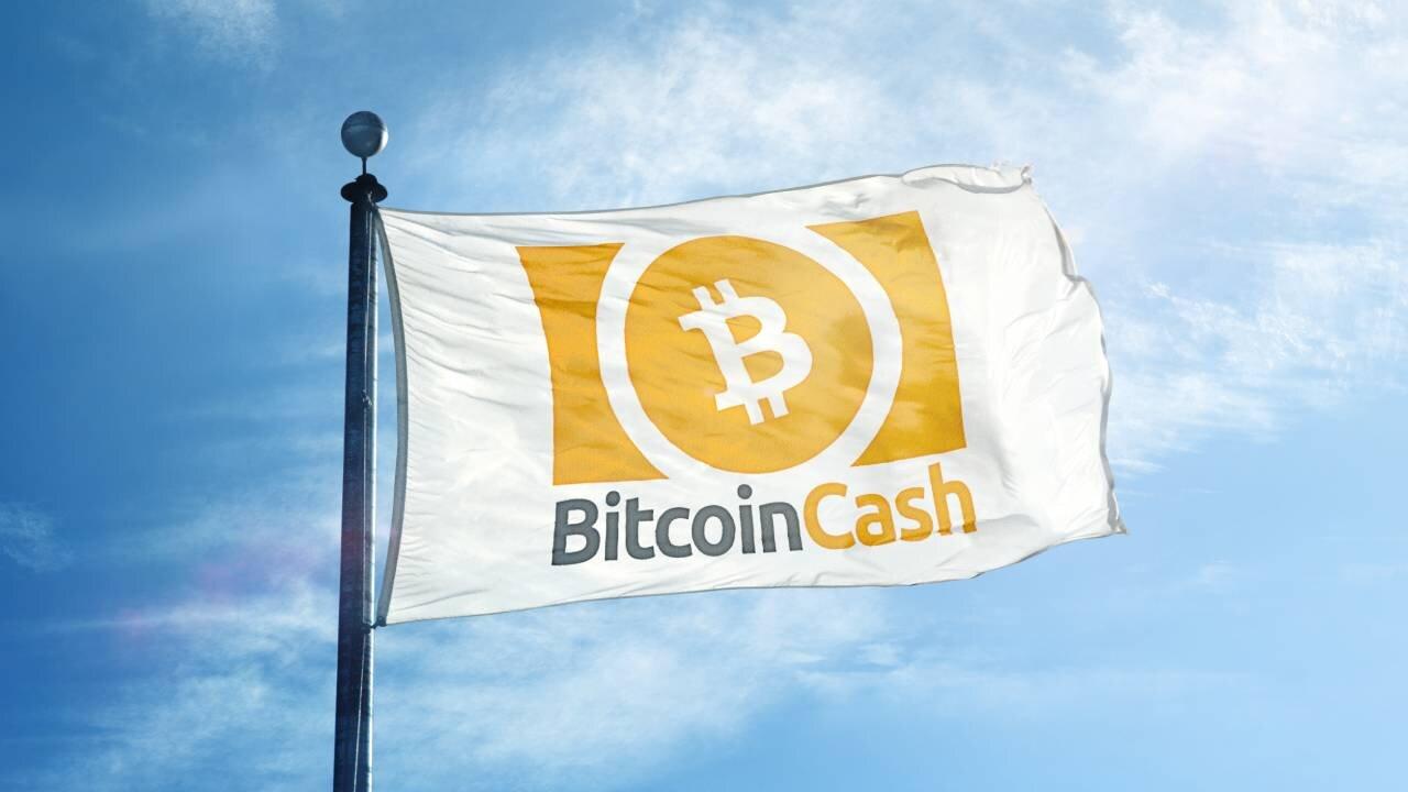 Flag displaying Bitcoin Cash logo