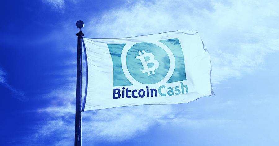 Toxic Bitcoiners drove Kim Dotcom to Bitcoin Cash