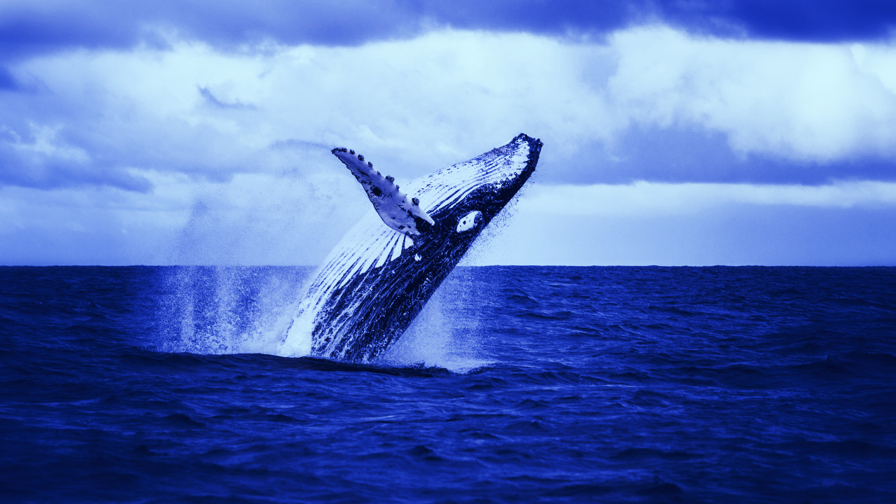 Whale Moves $1.3 Billion to DeFi After ETH Sets New All-Time High - Decrypt