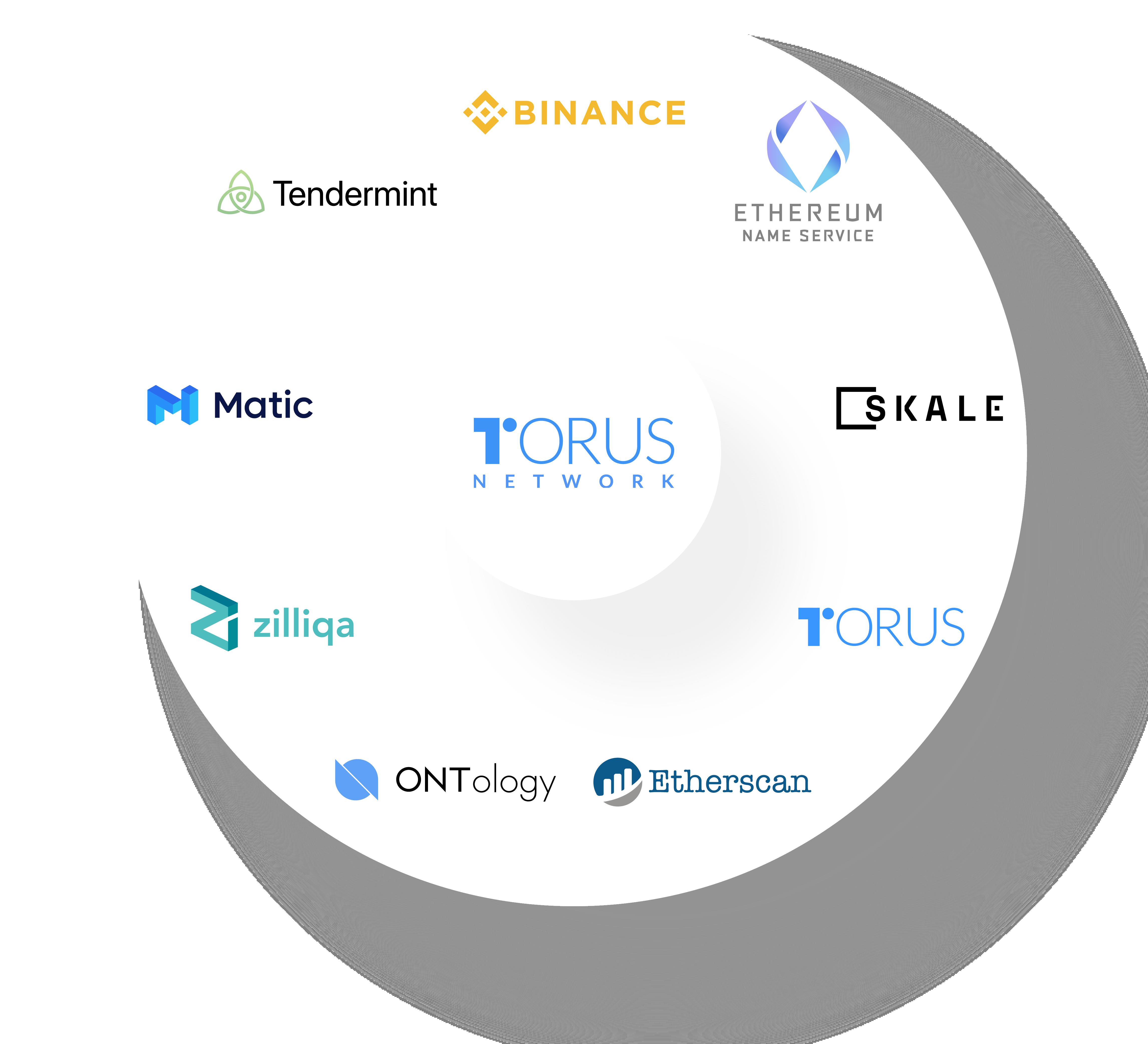 Torus-Network
