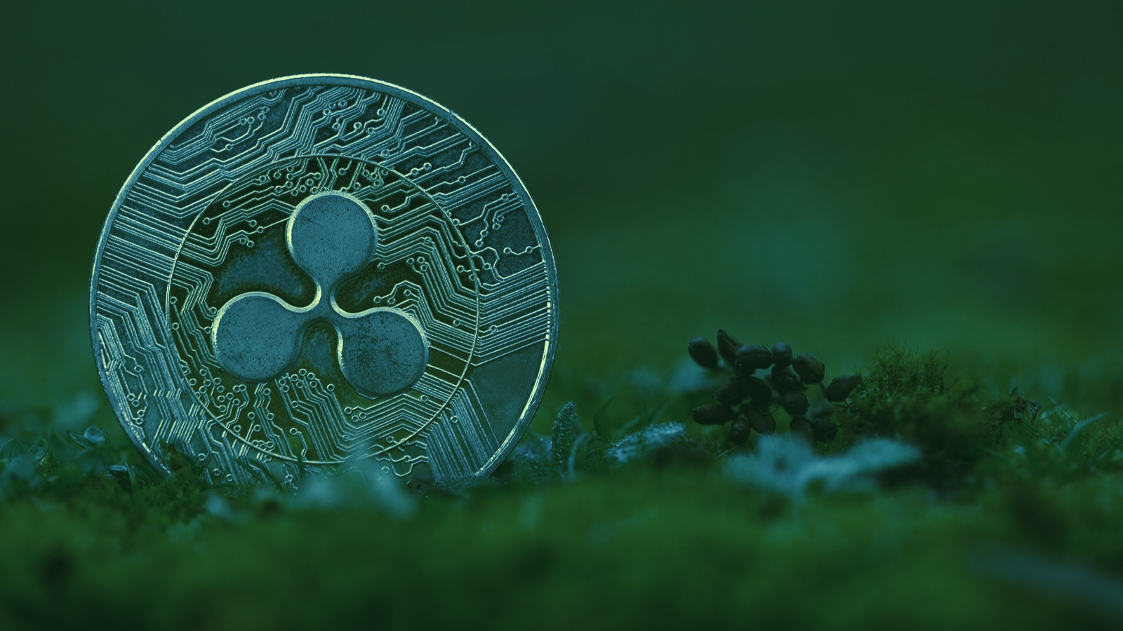 Ripple Joins NFT Boom With Launch of $250M Creator Fund