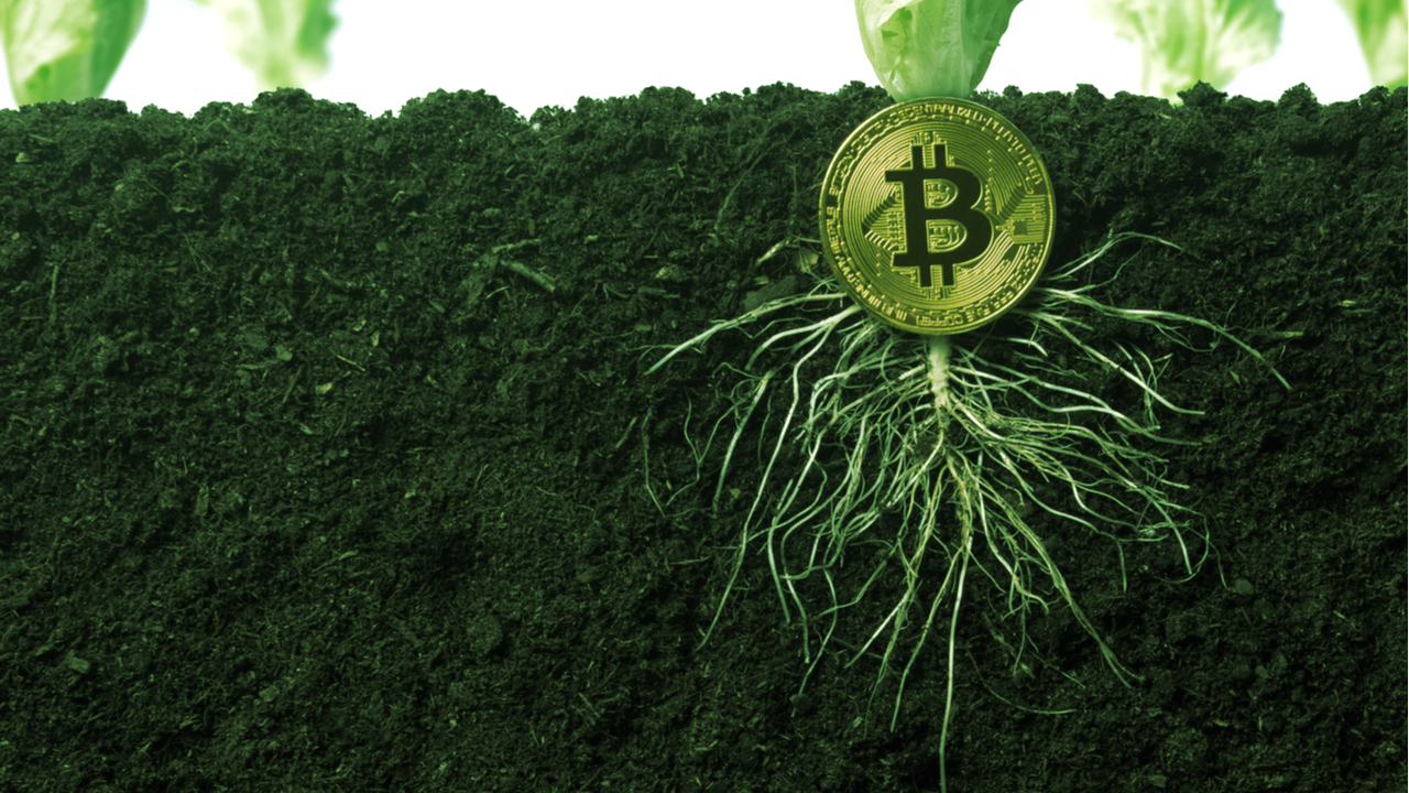 New Bitcoin Core Release Adds Taproot: What You Need to Know