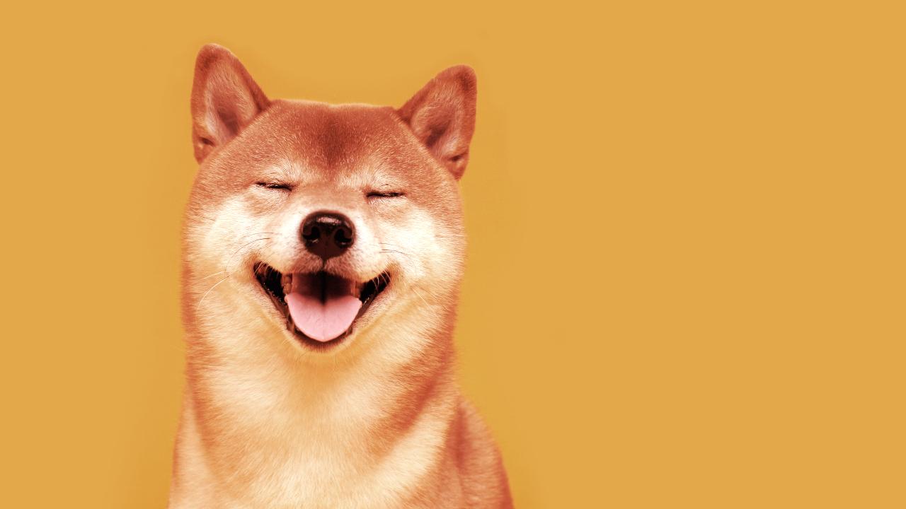 Qué Es Shiba Inu (SHIB) y Por Qué Está Explotando El Precio De Su Rival  Dogecoin? - Decrypt