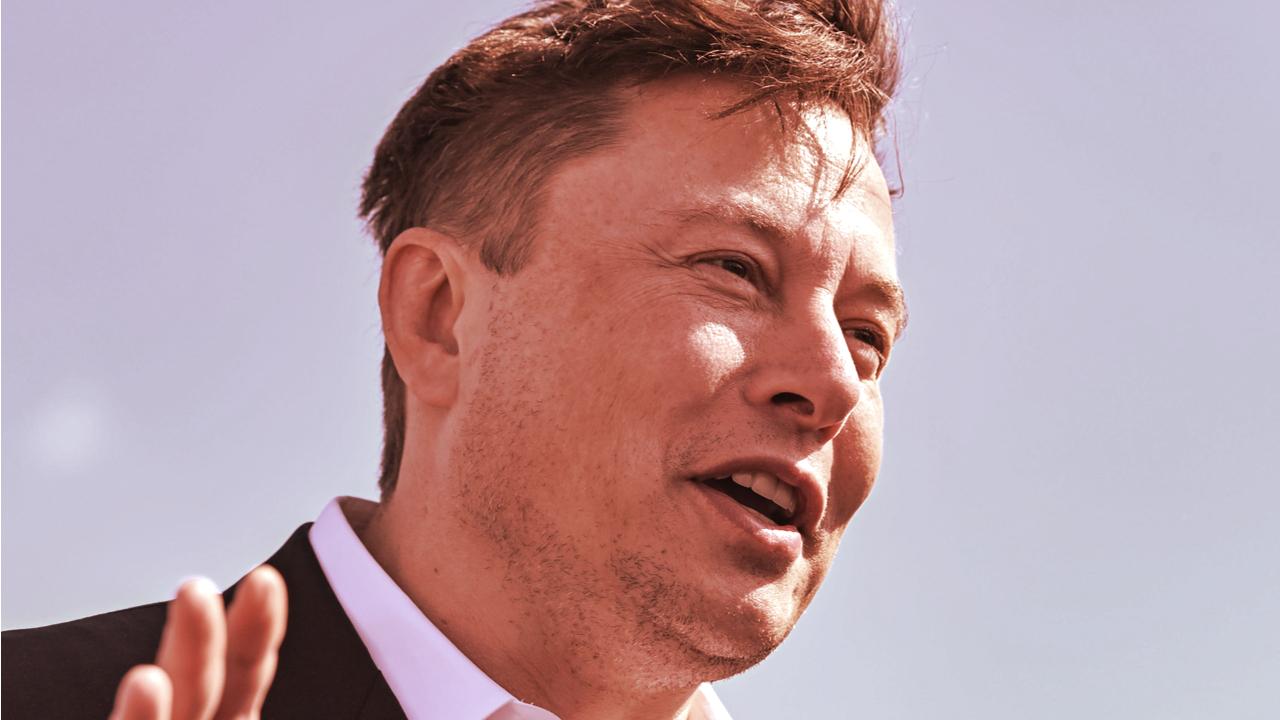 Elon Musk: Dogecoin-Trading Hamster 'Has Mad Skillz'