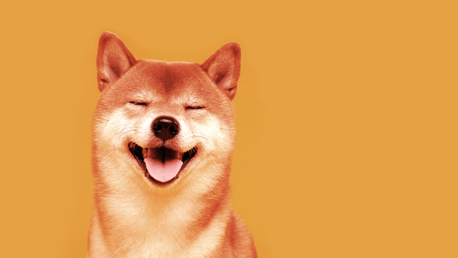 Bitcoin, Ethereum and Dogecoin Rose This Week
